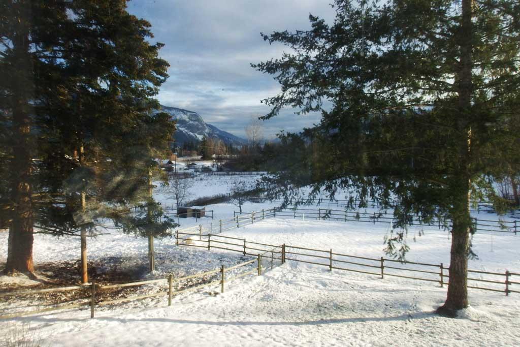 First snows at Gleneden Ridge Farm.