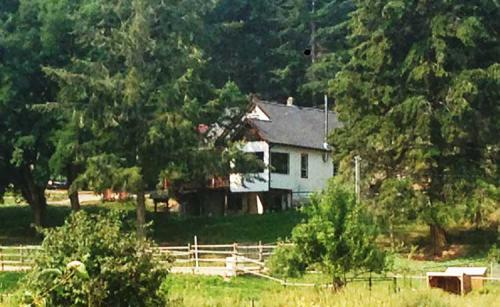 The-farmhouse,-nestled-in-the-trees